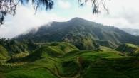 Zurück auf dem Festlandteil Malaysia geht es weiter nach Norden, in Richtung Ipoh und die Teefelder der Cameron Highlands. Nach den ruhigen Tagen an den Stränden Borneos will ich mal […]